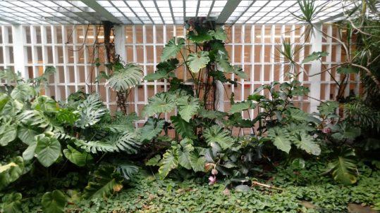 Jardins de Burle Marx