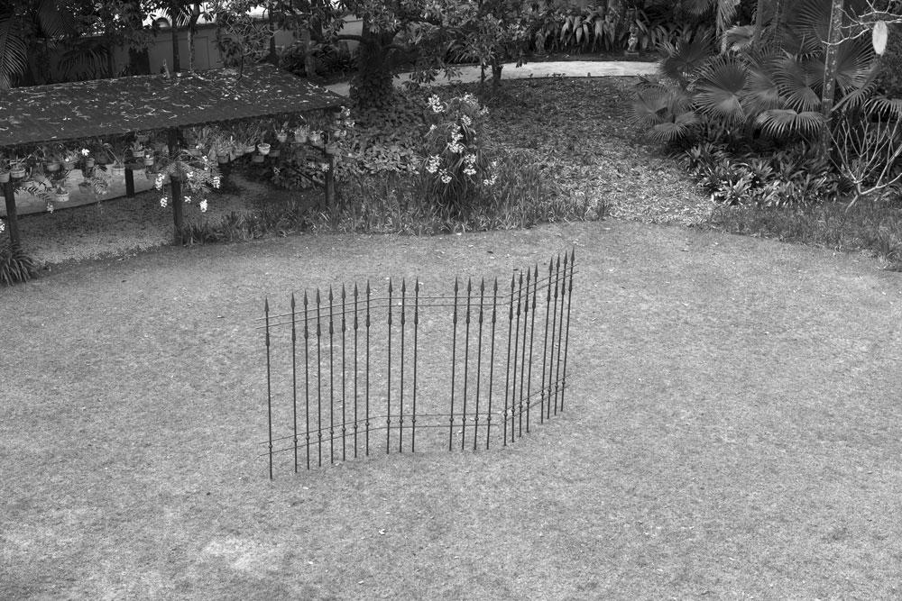 "Figura 18. Vista superior da estrutura de ferro de ""Penetra"" no jardim. Foto: Marcelo Arruda."